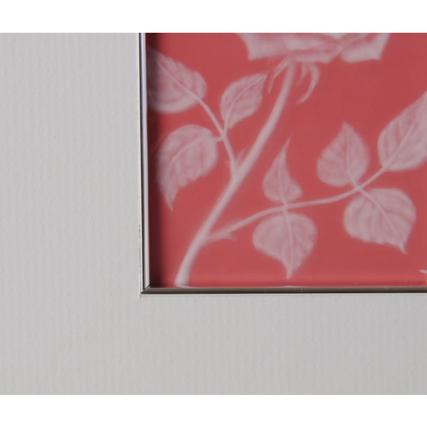 PINKJI TSUIHAKUDE BARAMON TOGAKU (Porcelain Painting Frame by Patio Patt with Rose design)